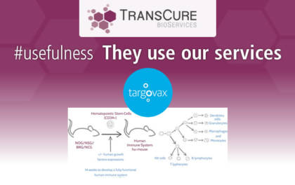 TransCure bioServices involved in Targovax's results